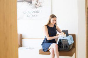 Tierarzt für Kleintiere - Tierarzt in Zwettl