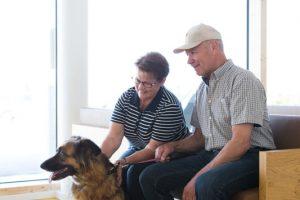 Tierarzt für Großtiere & Kleintiere - Tierarzt in Schweiggers